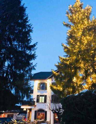 hotel-sanetsch-PHOTO-00000051-768x1024